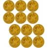 Piraten munten (12 sts)