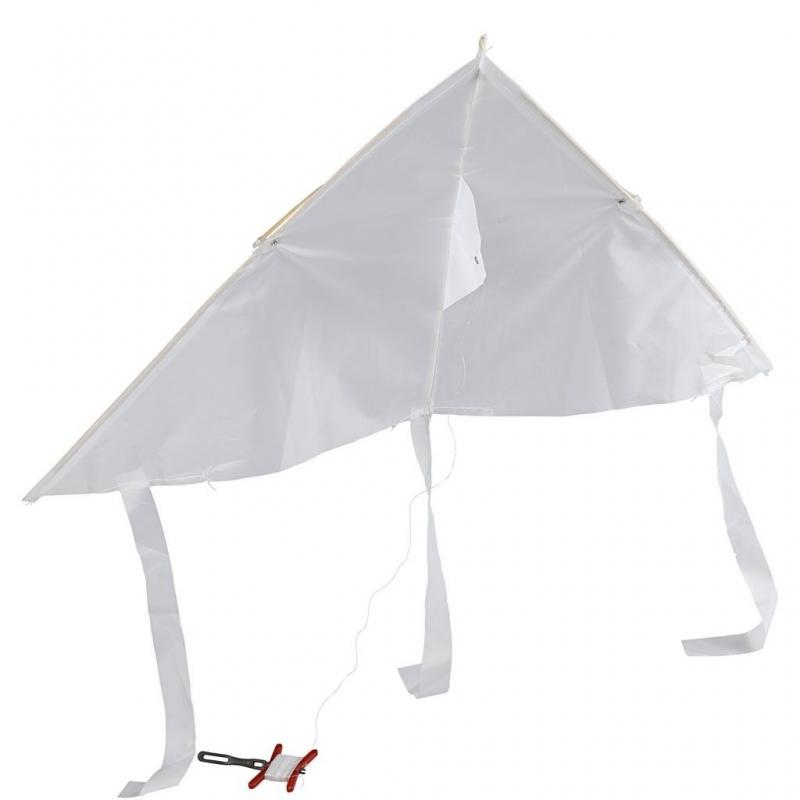 Blanco vlieger