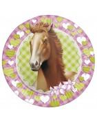 paarden feestje