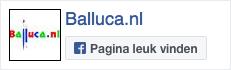 Facebook Balluca